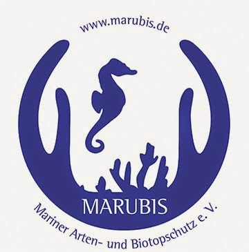 Unterstützer von Meeresschutzprojekten