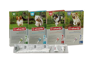Advantix Bayer