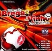 FORROZÃO BREGA & VINHO 2016 - CD VERÃO NA PISADINHA
