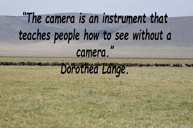 Friday Photography Quotes