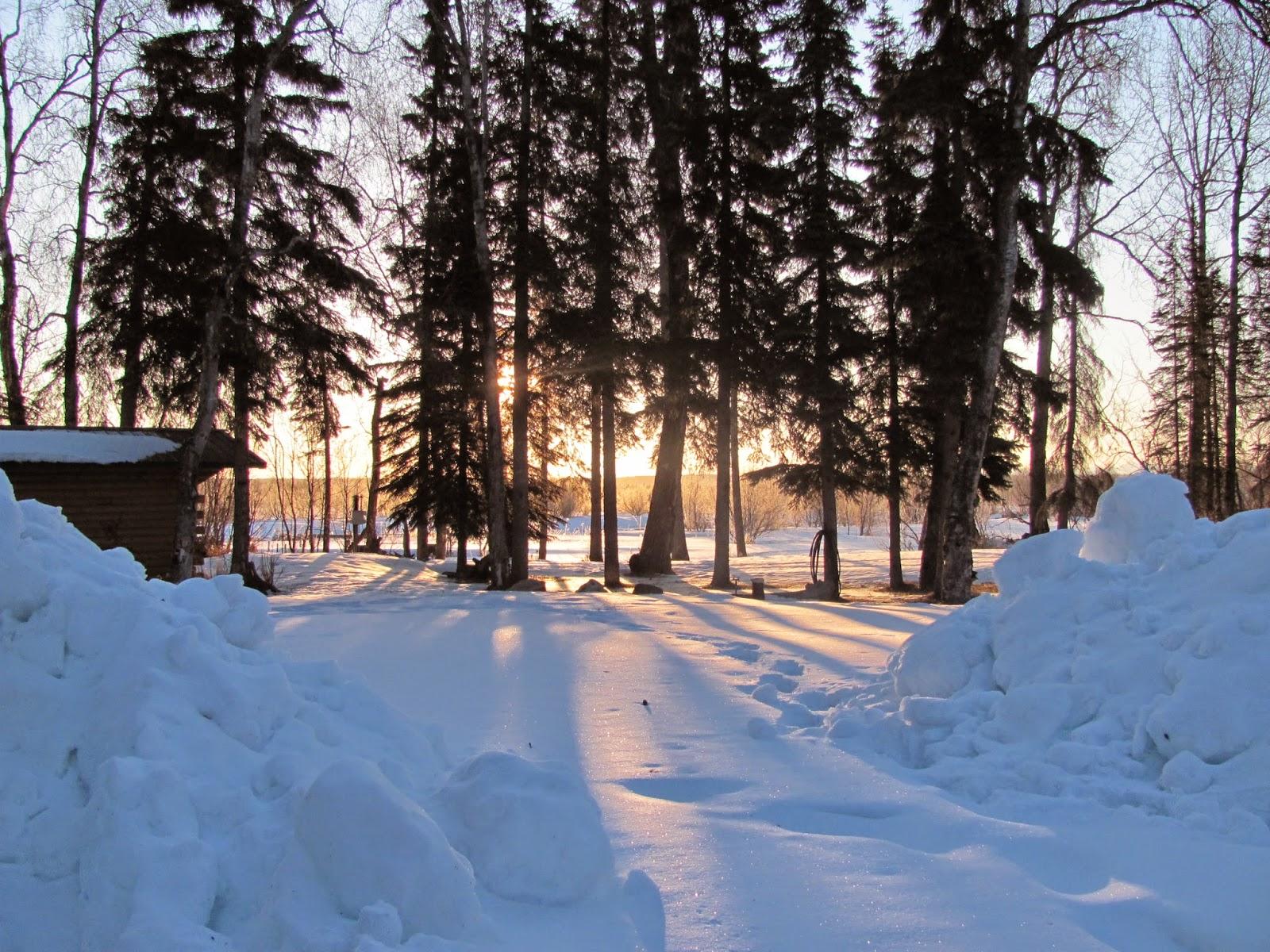 Beaver Creek Cabins Guide Service December 2014