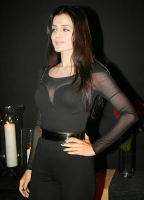 Ameesha Patel in Black Dress at succes bash party