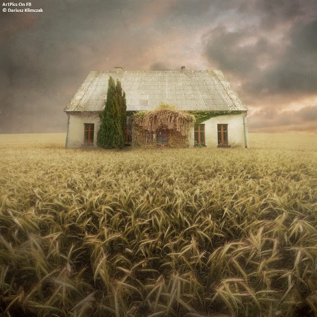 Dariusz Klimczak paintings Art work