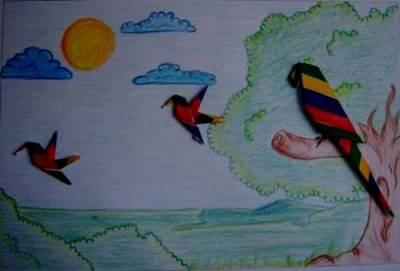 Todo pássaro tem direito a voar livremente.