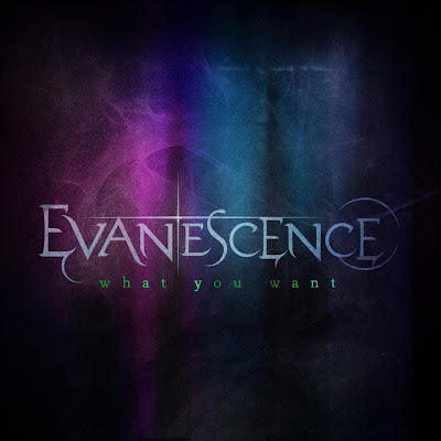 Evanescence-What_You_Want_(Complete)-Web-2011-FKK