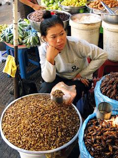 Жучки, паучки и тараканы на закуску в в Phsar Thmei - центральный рынок в Пномпене, Камбоджа Есть и быть www.EatAndBe.ru
