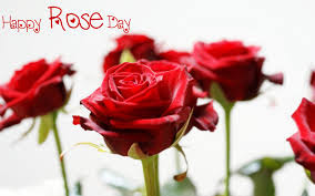 Happy-Rose-Day-HD-Wallpapers-HD-Images-2