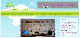 Aula Hospitalaria.Pediatría.