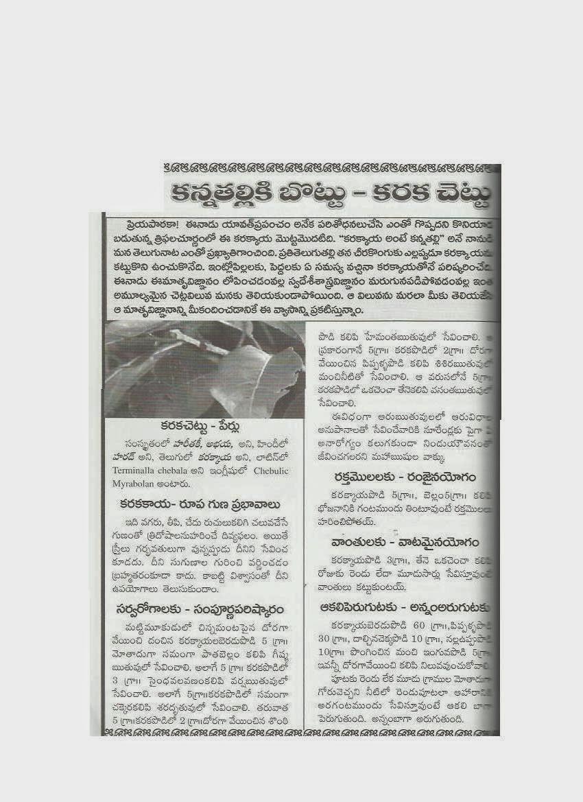 ayurvedic detox program in india
