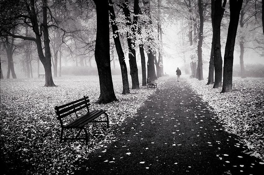 gambar pemandangan hitam putih