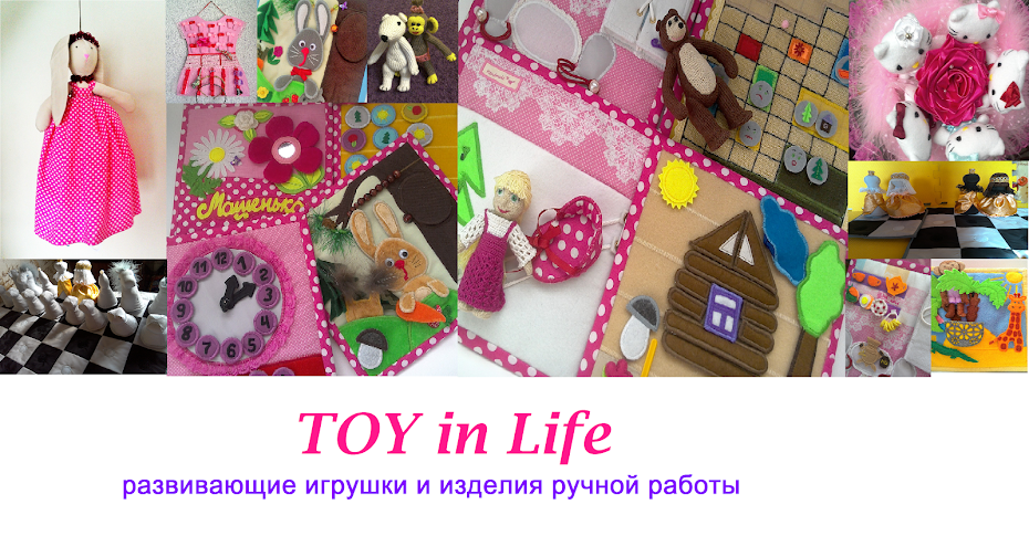 TOY in Life
