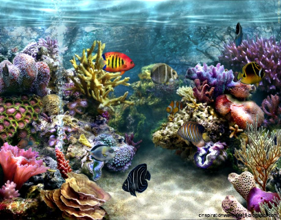 View Images Animated wallpaper and desktop backgrounds aquarium free download
