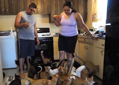 Animal Hoarders Reality Show