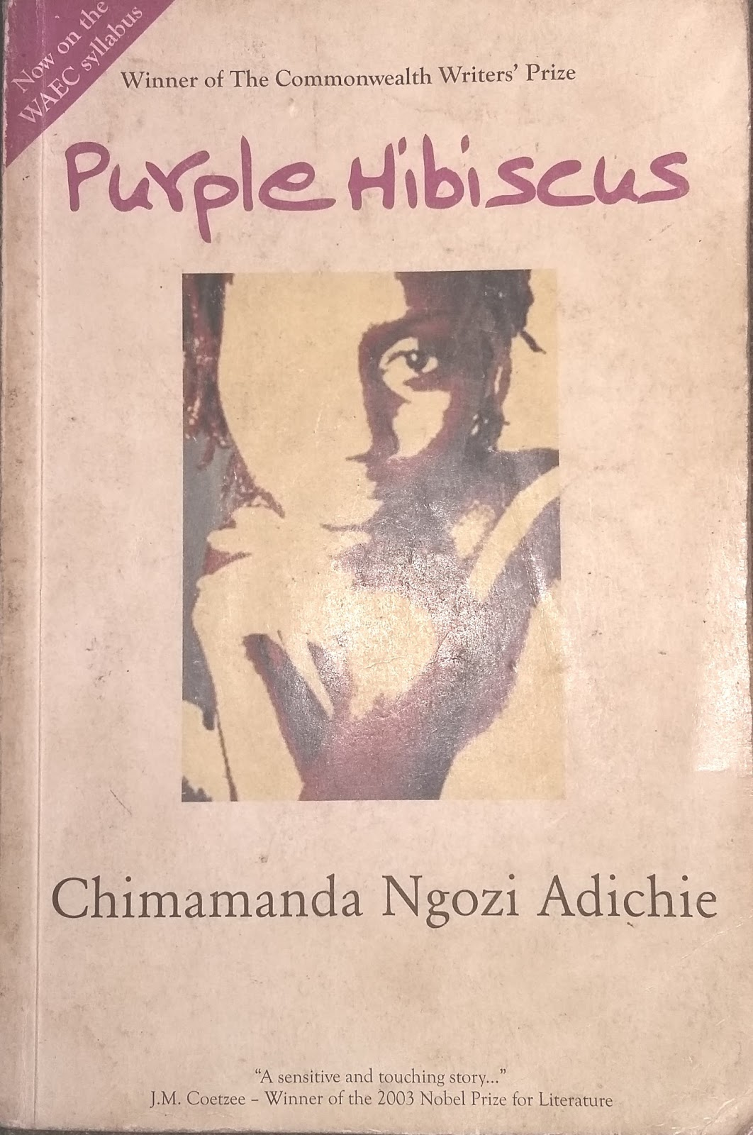 Religiousity Africanism Discussing Purple Hibiscus Reviewers Crib