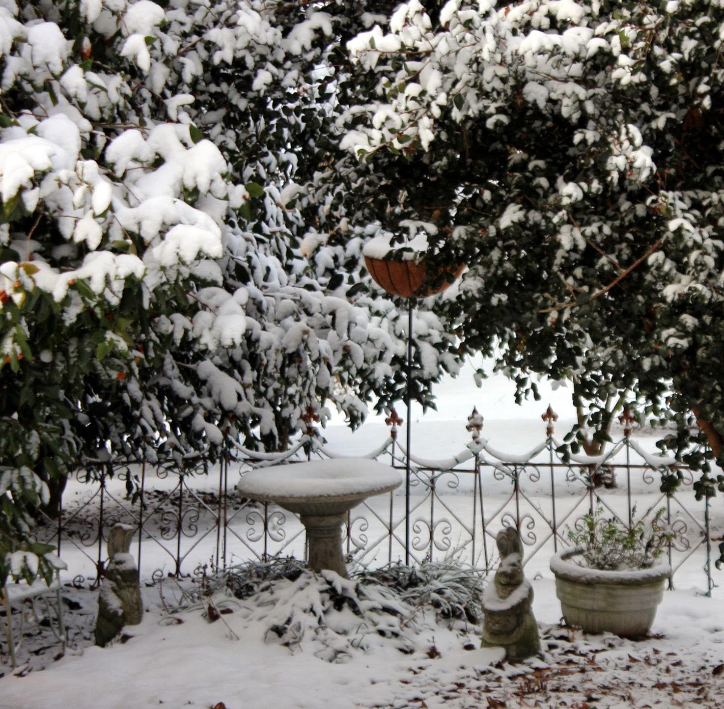 Italian Girl In Georgia Southern Snowfall