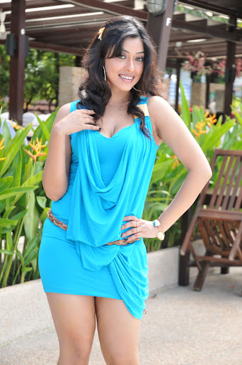 Payal Ghosh Spicy Photos In Tight Blue Dress