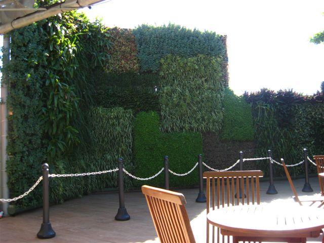 jardim vertical rio de janeiro:Blog da Paisagista: Jardim Vertical no Pão de Açúcar – RJ