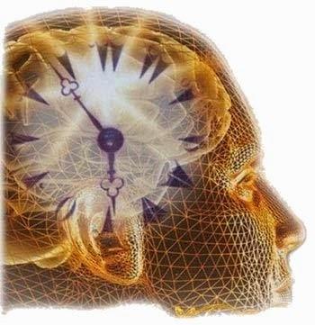 Νίκος Λυγερός - Η συμβολή της νευροφιλοσοφίας.