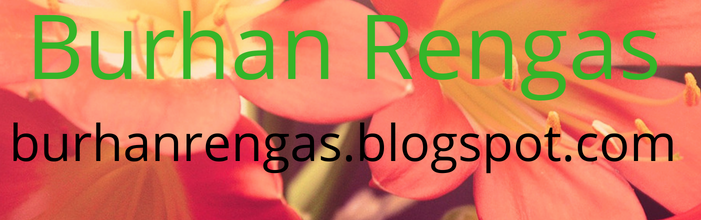 Mutiara Bisnis Online | Bimbel Buku Dewa SEO Burhan Rengas