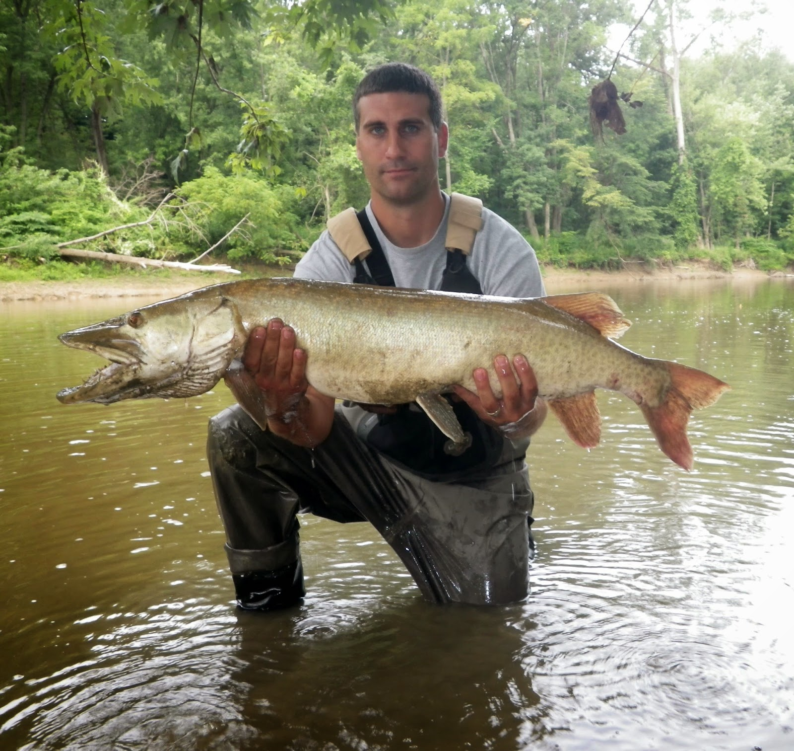 Ohio fishing source pre weather front muskie for Muskie fishing ohio