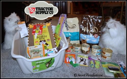 Truffle and Brulee with the cat food and supplies from TSC #Tractor Supply