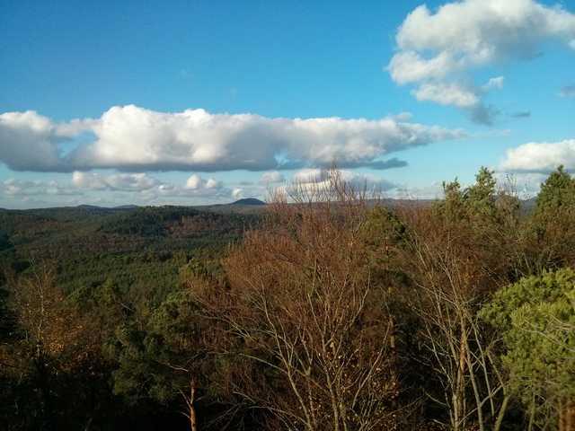 Blick auf die Wälder des Pfäzerwalds