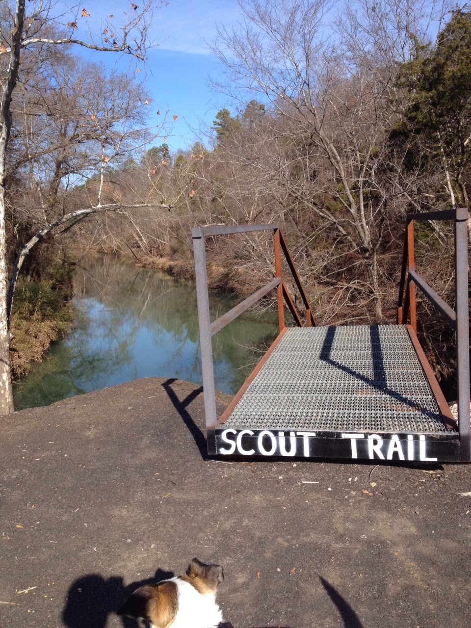 Scout Trail Spadra Creek Nature Trail, Clarksville, Arkansas by Johnnie Chamberlin