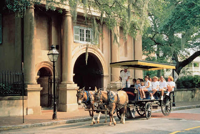 Charleston, SC horse and carriage