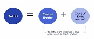 Understanding the Cost of Capital