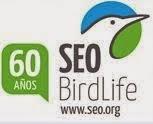 SEO/ Birdlife