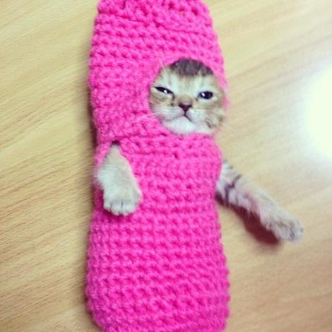 Wasabi-chan wearing pink crochet costume