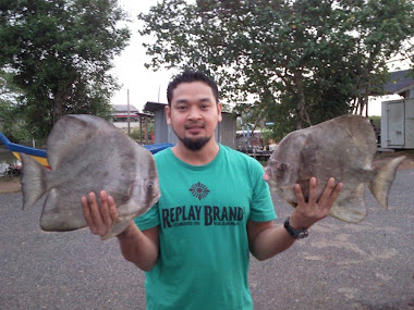 Pali ngan Ikan Telinga Gajah