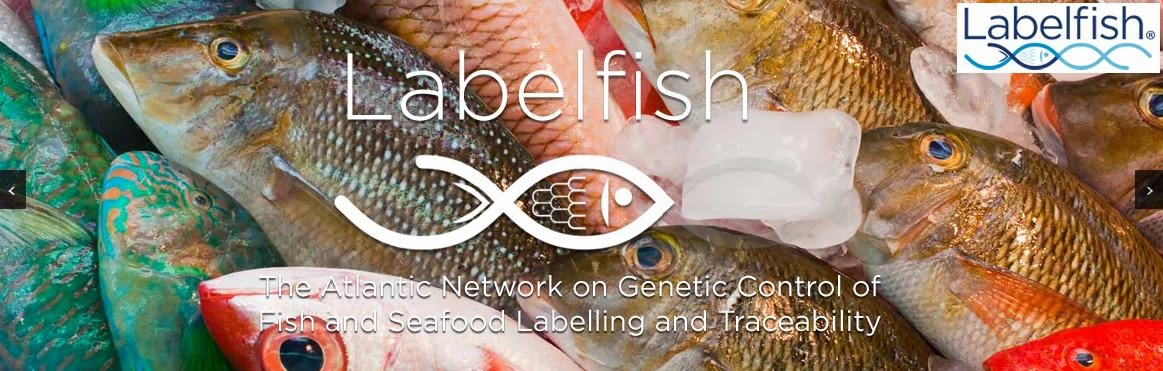 http://labelfish.eu/
