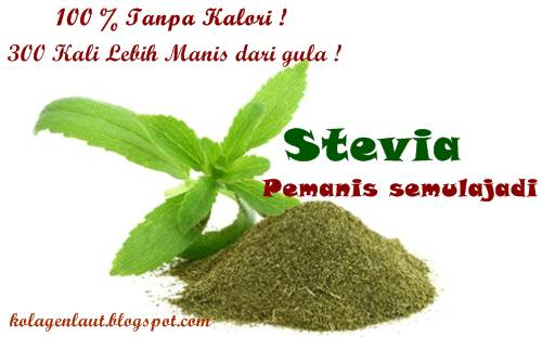 Khasiat Stevia