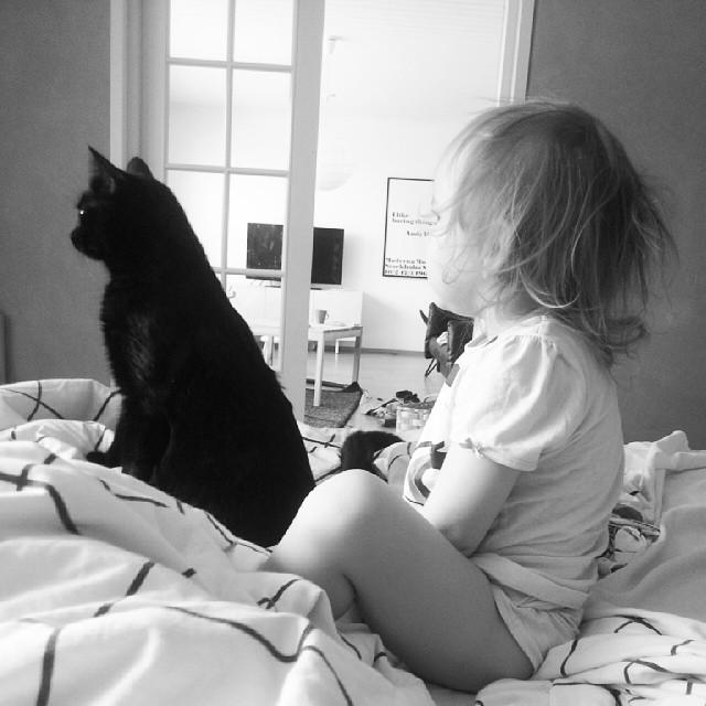 Tyttö ja musta kissa