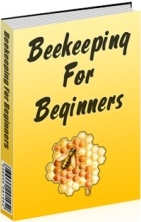 The honey beekeeper - Beekeeping beginners small business ...