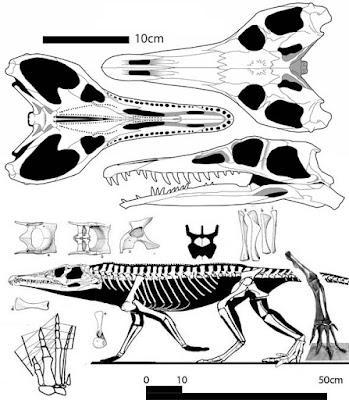 reptiles del triasico