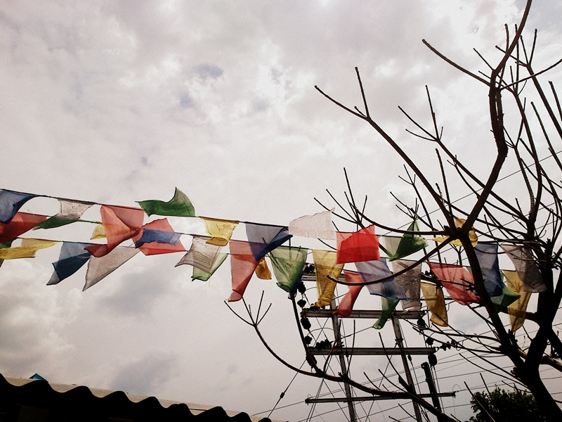 Where Peace and Conflict Coexist: Dalai Lama's Dharamshala