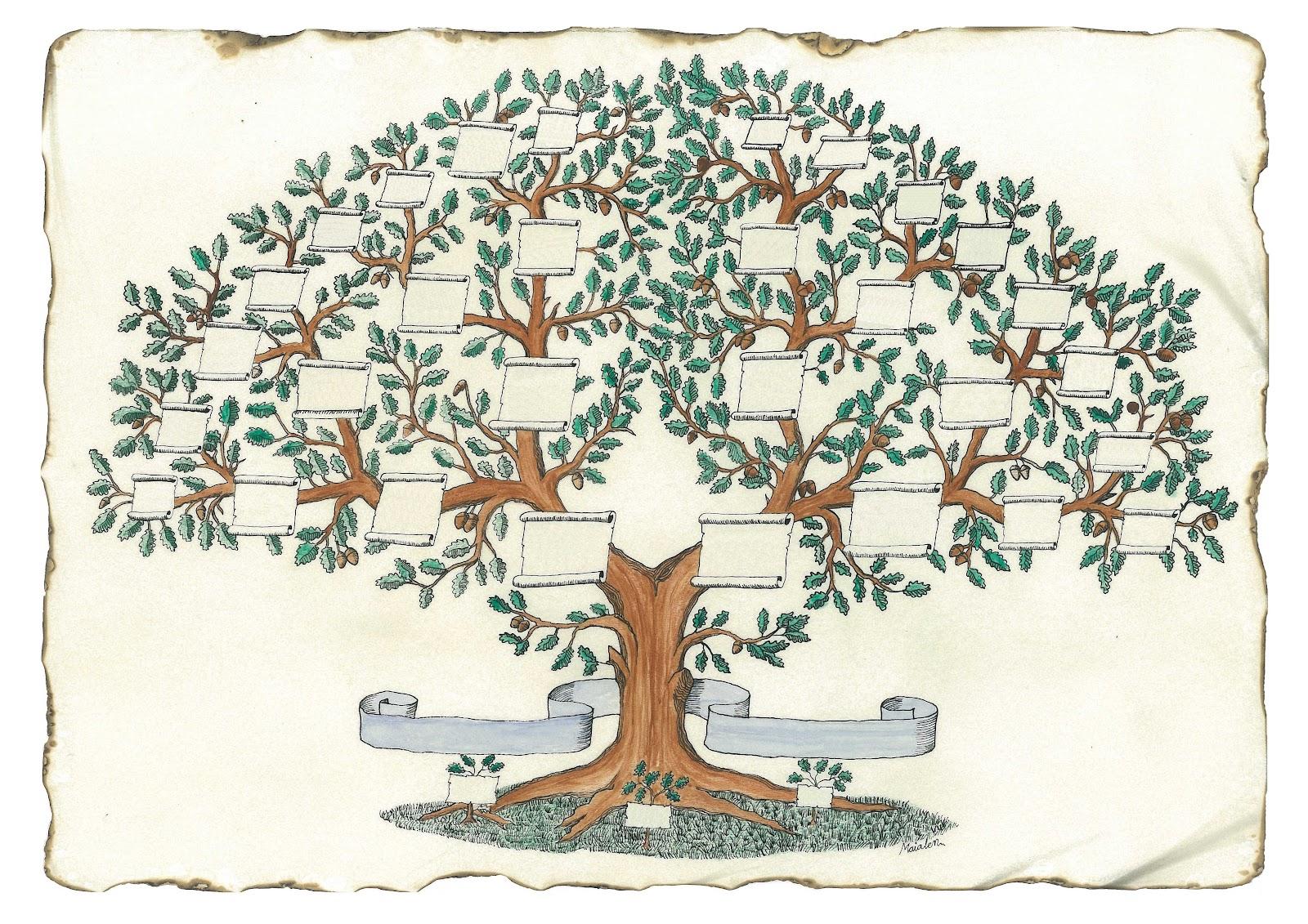 Arboles geneal gicos - Ideas para hacer un arbol genealogico ...