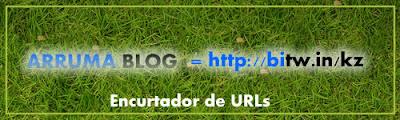 encurtador de URL bitw.in - Saiba como a do Arruma Blog ficou