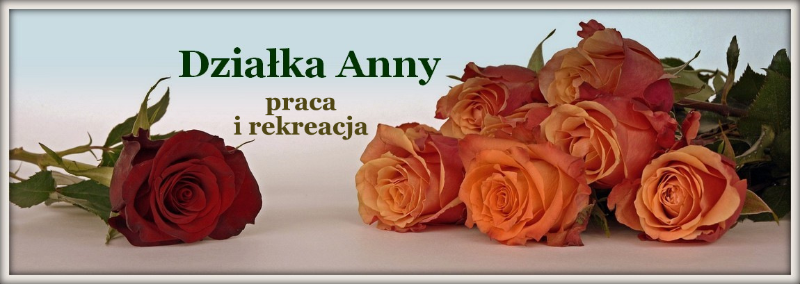 Działka Anki