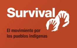 Los pueblos indígenas necesitan tu ayuda