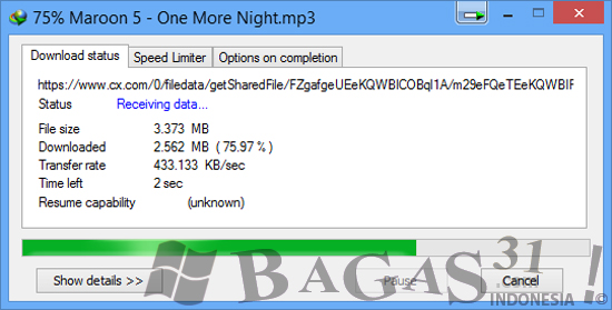 Internet Download Manager 6.14 Build 5 Full Patch 3