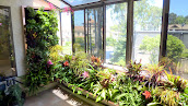 #2 Vertical Garden Ideas