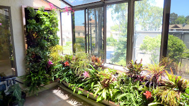 #10 Vertical Garden Design Ideas