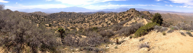 Panorama southwest from highpoint 5160', Black Rock Canyon, Joshua Tree National Park