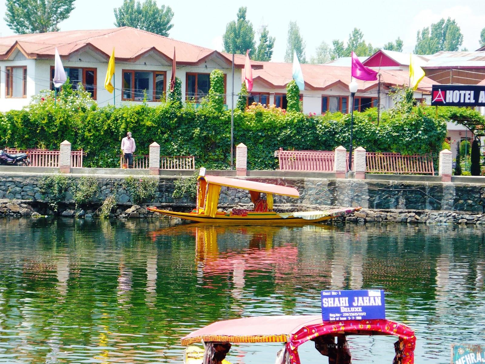 shikara in dal lake kashmir | hd kashmir wallpapers