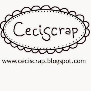 Blog de Cecilia