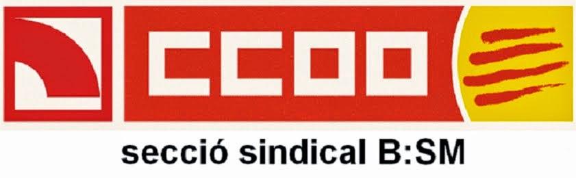 Sección Sindical CCOO_BSM