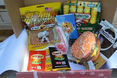 July 2015 Pet Gift Box Review